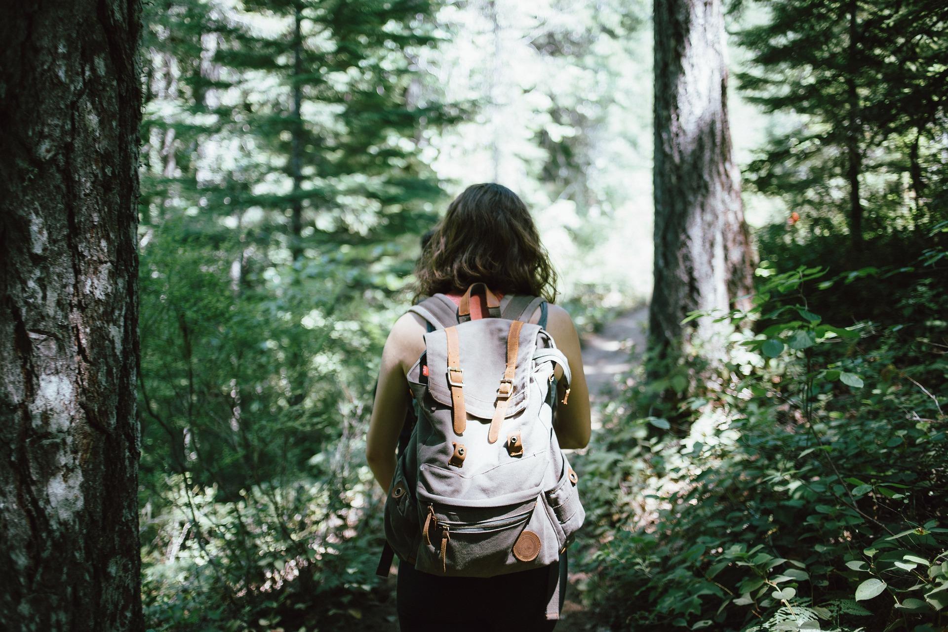 Camminare nel bosco fa bene